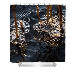 Ice Art Shower Curtain