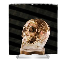 Ice Skull Shower Curtain