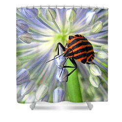 June Shower Curtain