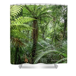 Shower Curtain featuring the photograph Jungle Ferns by Les Cunliffe