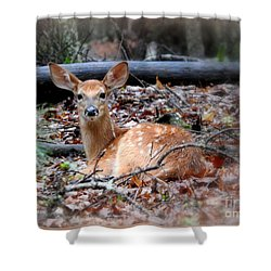 Just A Babe Shower Curtain by Brenda Bostic