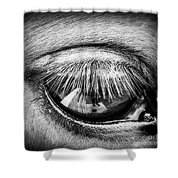 Just A Reflection  Shower Curtain