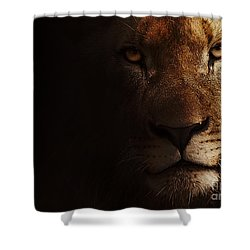 Shower Curtain featuring the photograph Lion by Christine Sponchia