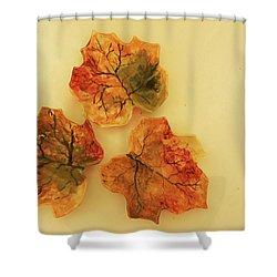 Little Leif Dish Shower Curtain