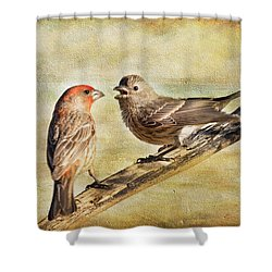 2 Little Love Birds Shower Curtain