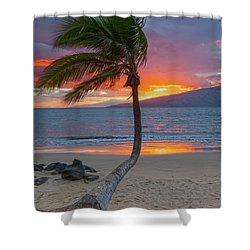 Lonely Palm Shower Curtain by James Roemmling