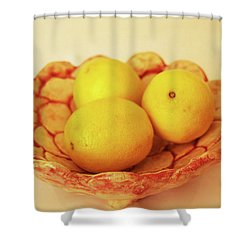 Medium Patches Bowl1 Shower Curtain by Itzhak Richter