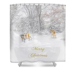 Shower Curtain featuring the photograph Merry Christmas by Mary Timman