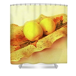 Mini Long Bowl Shower Curtain