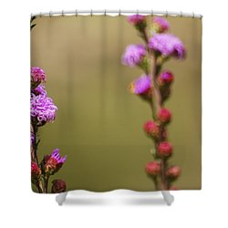 Shower Curtain featuring the photograph Mirror Image by Ramona Whiteaker