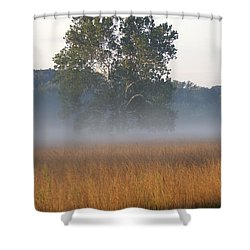 Morning Mist Shower Curtain