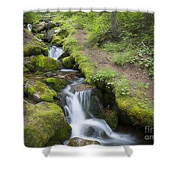 Mountain Stream Shower Curtain