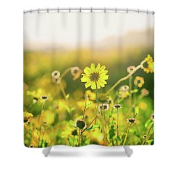 Nature's Smile Series Shower Curtain by Joseph S Giacalone