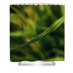 Shower Curtain featuring the photograph Natures Way by Gene Garnace