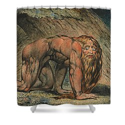 Nebuchadnezzar Shower Curtain