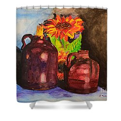 2 Old Jugs 1.. Shower Curtain
