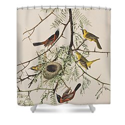 Orchard Oriole Shower Curtain by John James Audubon