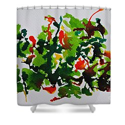 Orchids Shower Curtain