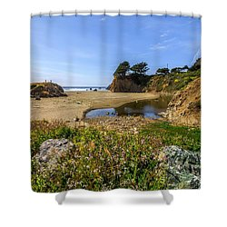 Pacific Coast Highway Shower Curtain