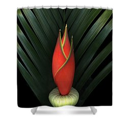 Palm Of Fire Shower Curtain