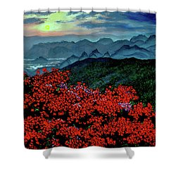 Paradise Shower Curtain by Stan Hamilton