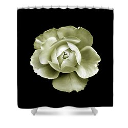 Shower Curtain featuring the photograph Peony by Charles Harden