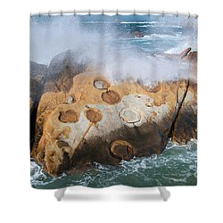 Point Lobos Concretions Shower Curtain