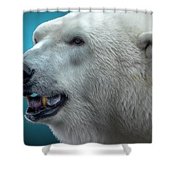 Polar Bear 2 Shower Curtain