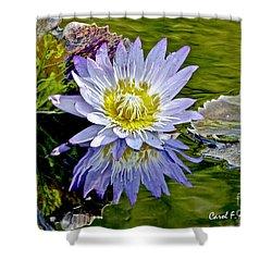 Purple Water Lily Pond Shower Curtain by Carol F Austin