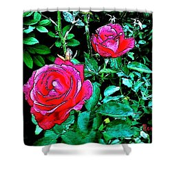 Shower Curtain featuring the photograph 2 Red Roses by Sadie Reneau