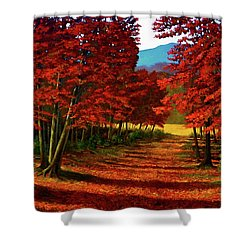 Road To The Clearing Shower Curtain