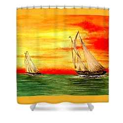 2 Sailboats Shower Curtain by Michael Vigliotti