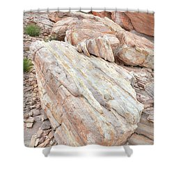 Shower Curtain featuring the photograph Sandstone Slope In Valley Of Fire by Ray Mathis
