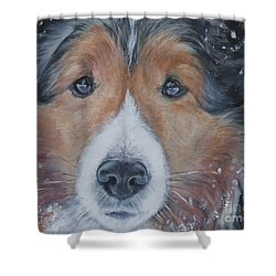 Shetland Sheepdog Shower Curtain by Lee Ann Shepard
