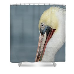 Shower Curtain featuring the photograph Simplicity by Fraida Gutovich