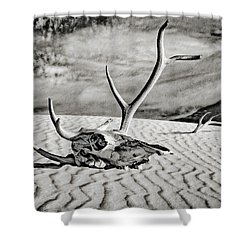 Skull And Antlers Shower Curtain