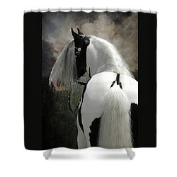 Slainte  Shower Curtain by Fran J Scott