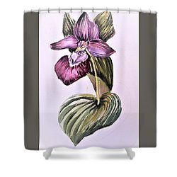 Shower Curtain featuring the painting Slipper Foot Orchid by Mindy Newman