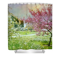 Shower Curtain featuring the photograph Solitude by Diana Angstadt