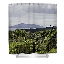 Somewhere Around Whangarei, New Zealand Shower Curtain