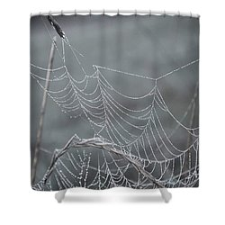 Spiderweb Droplets Shower Curtain