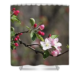 Shower Curtain featuring the photograph Blossom And Hope by Vadim Levin