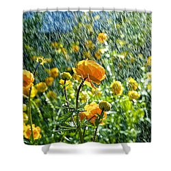 Spring Flowers In The Rain Shower Curtain by Tamara Sushko