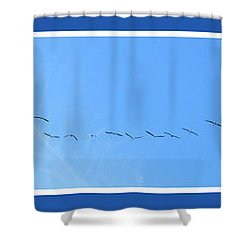 String Of Birds In Blue Shower Curtain