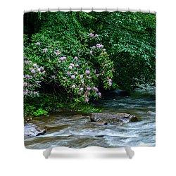 Summer Along Birch River Shower Curtain