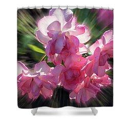 Summer Flowers Shower Curtain by Vladimir Kholostykh