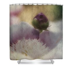 Sweetness And Light Shower Curtain