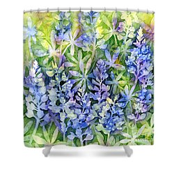 Texas Blues  Shower Curtain