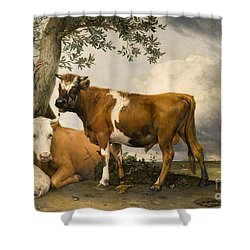 The Bull Shower Curtain by Paulus Potter