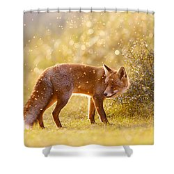 The Fox And The Fairy Dust Shower Curtain by Roeselien Raimond